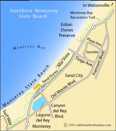 Monterey beach sunbathing gallery for Best beach in monterey ca