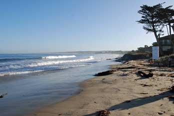 Monterey state beach california 39 s best beaches mobile for Best beach in monterey ca