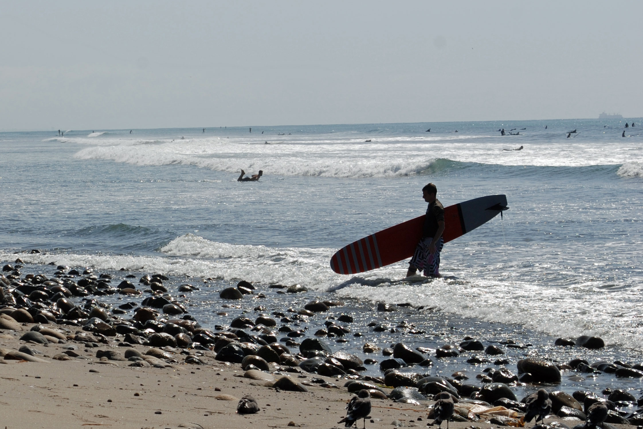 Surfers At San Onofre Beach Ca