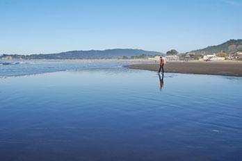 Stinson Beach Marin County Ca