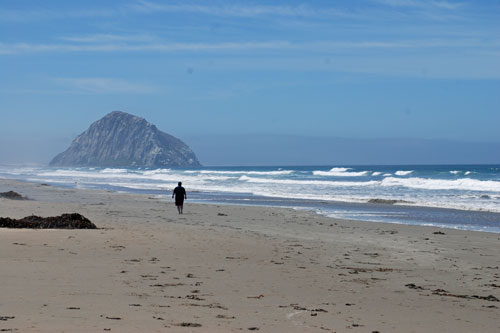 Morro Bay Beaches