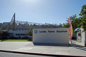 Cabrillo Marine Aquarium Los Angeles County Ca