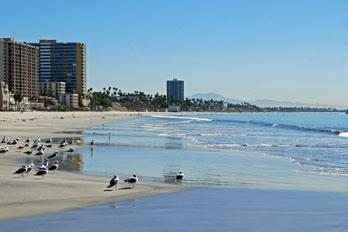 Long Beach California S Best Beaches
