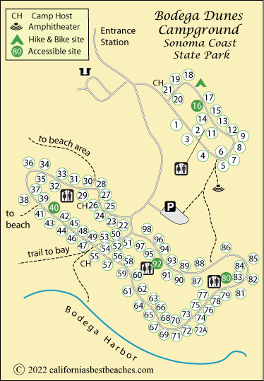 Map Of Sonoma Coast State Park S Bodega Dunes Campground Ca